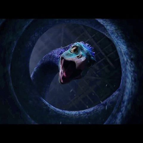 Fantastic beasts and where to find them movie review n for nerds