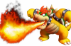 Bowser Flames N For Nerds