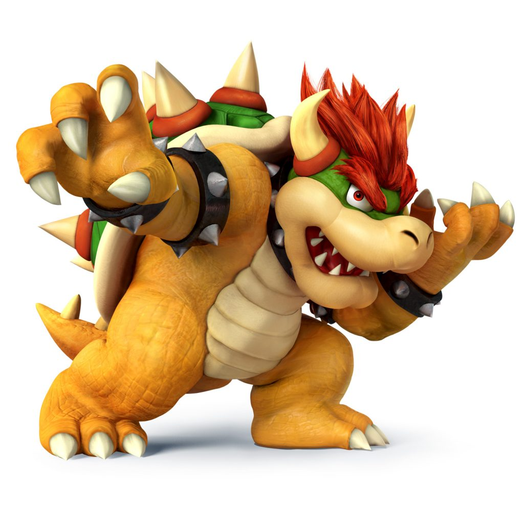 Bowser N For Nerds